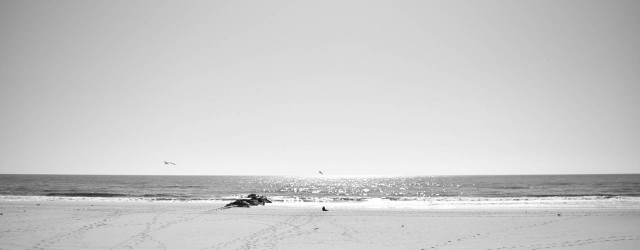 long-island-beach